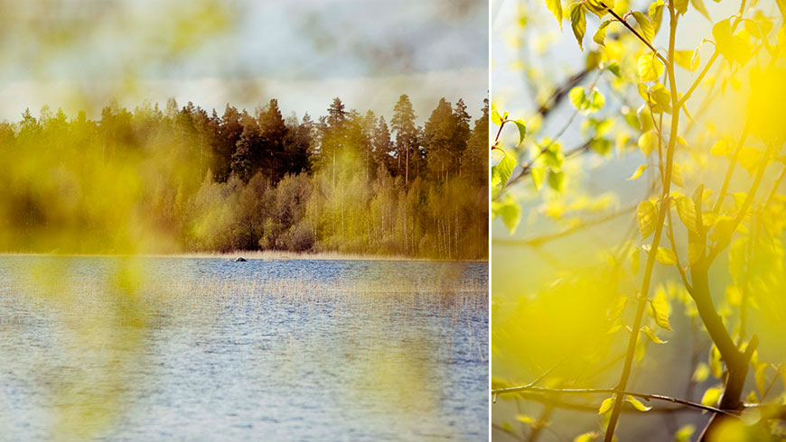 Finnland-Finland-Landscape-Stillife-Photography-Fotoreportage-05