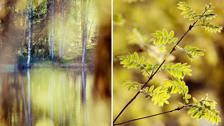 Finnland-Finland-Landscape-Stillife-Photography-Fotoreportage-24