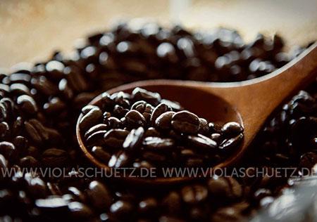 Vietnam-Fotoreportage-Reisefotografie-photoreport-Bild-Kaffee-Wieselkaffee-Kaffeeanbau-Kaffeeplantage