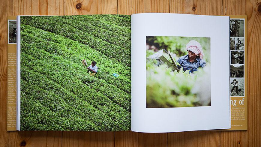 Buch-Bildband-Fotobildband-Fotobuch-Indien-India-23-tea-plantation-Kerala-Reisefotografie