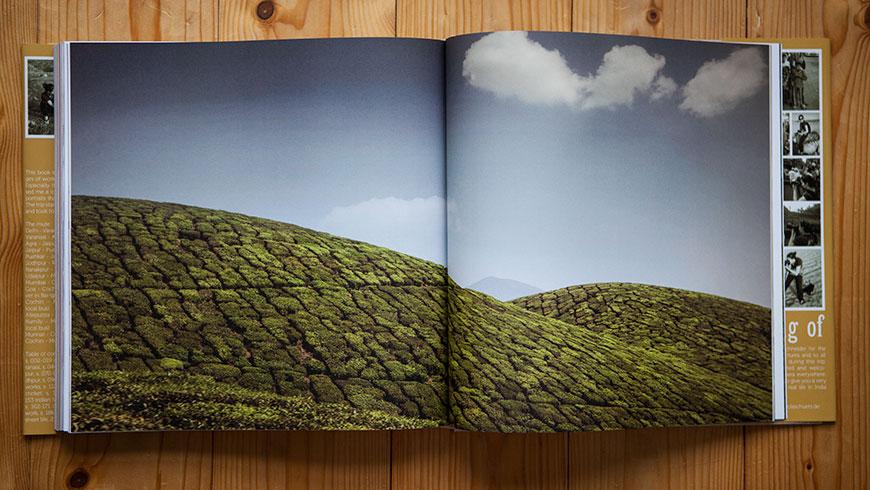 Buch-Bildband-Fotobildband-Fotobuch-Indien-India-24-tea-plantation-Kerala-Reisefotografie