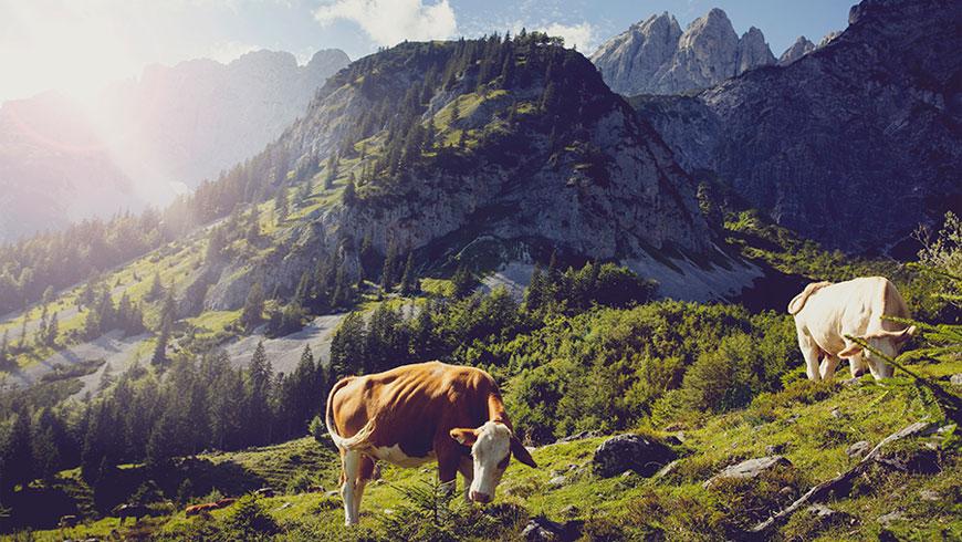 Treckingrad-Fahrrad-Bilder-Berge-Bayern-Oesterreich-Tourismus-Kampagne-Fotografie-Lifestyle-21